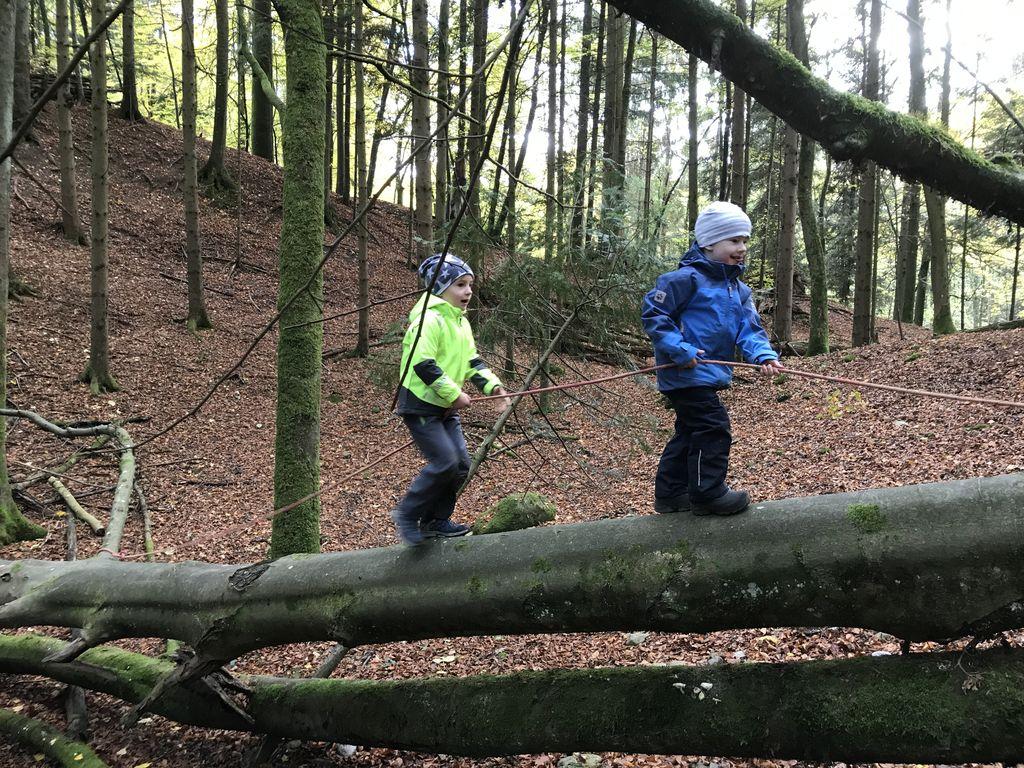 naturspielwald_waldfuex_balancieren_auf_umgekippten_baumstamm